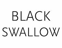 black-swallow-boutique
