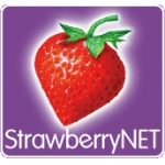 strawberry-net
